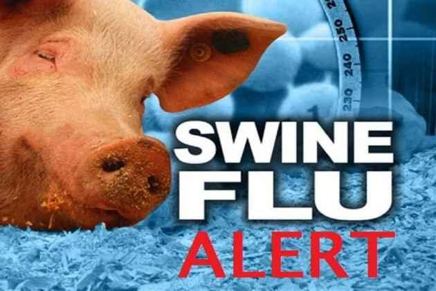 swine-flu_.jpg